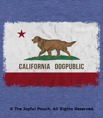 california-dogpublic-flag-NEW-golden-close-up
