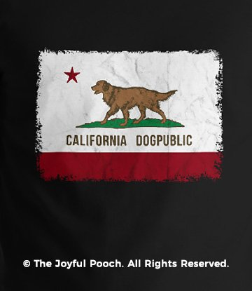 california-dogpublic-state-flag-black-close-up-new