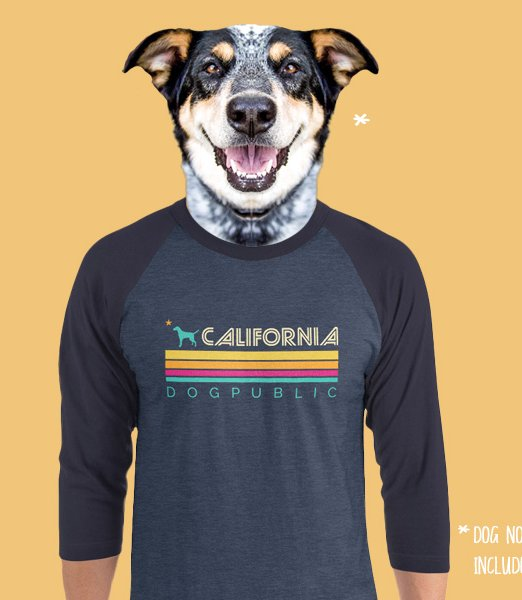 california-dogpublic-retro-dark-raglan
