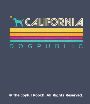 california-dogpublic-retro-light-close-up