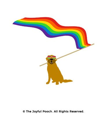 design-close-up-rainbow-flag-tan-dog