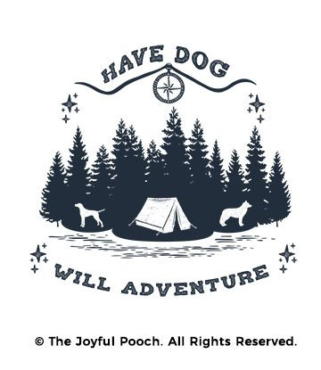dog-adventure-camp-close-up