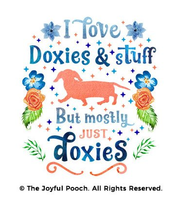 doxies-and-stuff