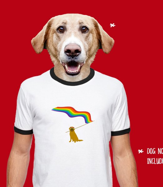 rainbow-tan-dog-white-ringer