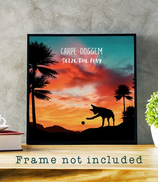 carpe-doggem-product-gallery-mockup