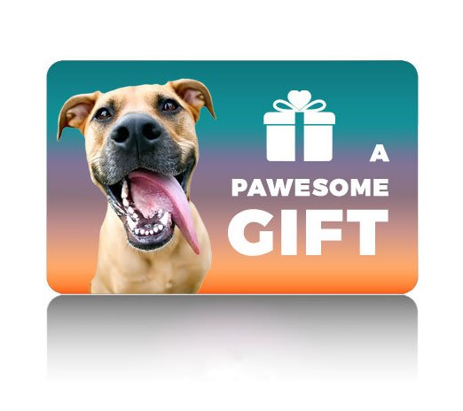 fergie-gift-card-product-photo