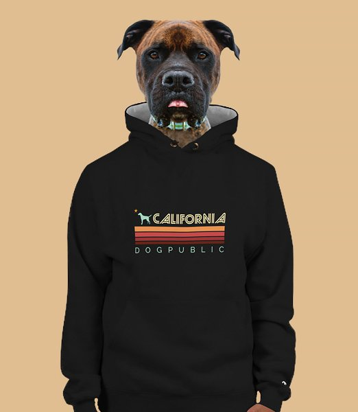 california-dogpublic-retro-champion-hoodie